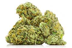 _O6A0706-Edit (josh.r) Tags: oregon portland studiophotography canon100mmf28macro macro focusstack composite commercialphotography canon5dmarkiii pocketwizard paulcbuffeinsteine640 marijuana pot weed cannabis