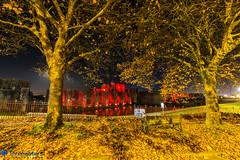 Caerphilly Castle Poppy (Stevehughes1250) Tags: leaves autumn visitorcentrecaerphilly cadw caerphilly caerphillycastle caerfilli moat drawbridge castle southwales red reflection night poppies remembrance sunday