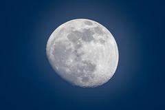 Imperfect round moon (BP Chua) Tags: moon round bluehour blue closeup details telephoto nikon d750 singapore asia