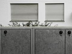Blinds (schauplatz) Tags: canon kompaktkamera stuttgartrohr fenster window wall house haus hauswand mlleimerkasten mllkasten jalousien rolladen blinds closed geschlossen abweisend