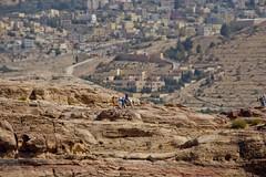 Petra, Jordan (The_mediterranean_traveler) Tags: petra jordan rawimages nikon nikond5300 pinkrock cliffs peaceful hiking backpacking trekking middleeast desert history historical trees