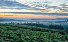 Morning fog (murphy197) Tags: anneflaherty landscape light ireland atmosphere fog nikond7100 tokina1116mm