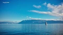 Blue life. (Jean McLane) Tags: lake lakeview lakescape landscape paisaje paysage water boats sailor marin calm leman suisse lausanne