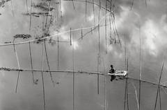 A Weekend Fisherman (_MaK_) Tags: street dailylife people river fishing fisherman weekend reflection cloud line relaxation bangladesh monochrome bw