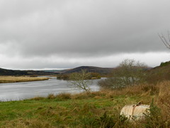 Kyle of Sutherland, near Rosehall, Sutherland, Nov 2016 (allanmaciver) Tags: kyle rosehall river low cloud heavy dark weather rain cold boat upturned wet grass boggy cloudy allanmaciver sutherland