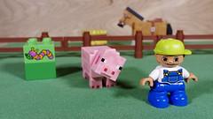 Little Farmer Boy (Busted.Knuckles) Tags: home toys lego duplo minecraft minifigures boy pig horse pentaxk3 camerautility5