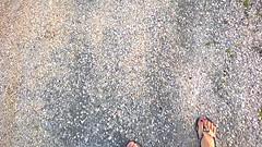 Synchronized walking (alex.gb) Tags: synchronized walking pleasant company lonely beach shell whatelse crackling bed synchronizedwalking clickcamera impressionsexpressions