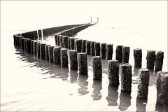 When the tide comes in (leo.roos) Tags: breakwater mole groyne groin golfbreker palen posts vlissingen flushing noordzee northsea westerschelde sepia oktoberfest2016 challenge dyxum fedmikron  helios893019 russianlens sovietglass fixedlens darosa leoroos vastelens adaptedtoemount noiretblanc a7s paalhoofd badstrand
