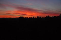 Mourir seul  Bretoncelles, Orne, octobre 2016 (Stphane Bily) Tags: stphanebily bretoncelles orne bassenormandie crpuscule sunset