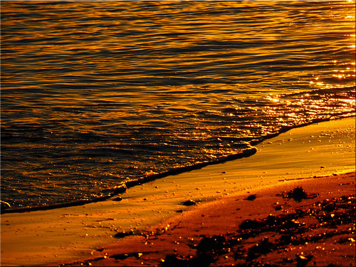 Golden waters of the Baltic Sea in evening sunlight