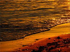 Golden waters of the Baltic Sea in evening sunlight (Ostseetroll) Tags: deu deutschland geo:lat=5414771136 geo:lon=1097338406 geotagged grmitz ostseestrand schleswigholstein ostsee balticsea gold golden wasser water spiegelungen reflections sonnenuntergang sunset strand beach