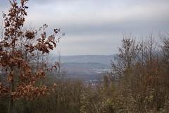 Blick auf Bingen, Rochuskapelle und Niederwalddenkmal (Germania)