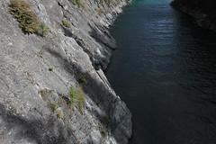 IMG_9448 (ctmarie3) Tags: banffnationalpark lakeminnewanka stewartcanyon trail