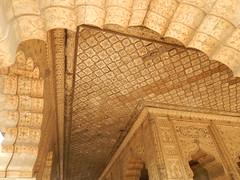 DSCN5136.JPG (Drew and Julie McPheeters) Tags: india delhi redfort