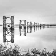 Alloa-Throsk Rail Bridge (roseysnapper) Tags: alloaswingbridge bw firthofforth nikkor2470f28 nikond810 blackandwhite circularpolarizer railbridge throsk grass monochrome pylon railway river