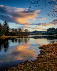 Eivindsvatnet, Norway (Vest der ute) Tags: g7x norway rogaland haugesund djupadalen water waterscape landscape reflections mirror earlymorning trees clouds sky fav200