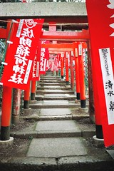 Jinja (Gai) Tags:    kamakura kanagawa japan  jinja   red