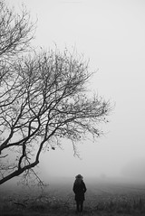 (esmeecadoni) Tags: woods europe netherlands beautifulearth trees tree sony outdoor autumn simple simplicity minimal light minimalistic littlethings mist holland morning forest fog photography landscape fall nature