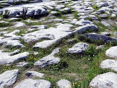 Burren National Park, County Clare, Ireland (Anne O.) Tags: 2014 clare countyclare irland holeofsorrows burren panoramio6954847110288289