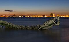 St-Brvin - Le serpent de mer (Fabinambule) Tags: saintbrevin serpentdemer fabienensarguex fabinambule armonyoftheseas reflet heuredore heurebleue 1855 canon 100d reflexion