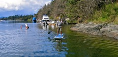 vsup1 (vikapproved) Tags: canada up vancouver island stand bc board paddle columbia victoria british 112 sup x30 starboard blend