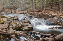 Stream near Fortune Lake, Gatineau Park (Rob Huntley Photography - Ottawa, Ontario, Canada) Tags: trees waterfall stream quebec gatineau gatineaupark huntley fortunelake robhuntley robhuntleyphotography