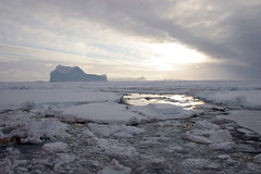 """Antarctic Icebergs • <a style=""""font-size:0.8em;"""" href=""""http://www.flickr.com/photos/16564562@N02/7109964911/"""" target=""""_blank"""">View on Flickr</a>"""