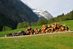 Rauris, im Pinzgau (Waidblicker) Tags: nature austria rauris pinzgau hohetauern wörth bucheben