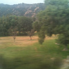 (Glass Wheels) Tags: california travel arizona southwest train square us colorado unitedstates daughter mother crosscountry amtrak squareformat stateline iphoneography instagramapp uploaded:by=instagram foursquare:venue=4c1c0933b9f876b04f4a7b46 chicagotolosangeleslalosangelesnewmexicokansas
