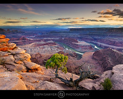Last Light at Dead Horse Point (Steph Sawyer Photography (on and off)) Tags: sunset southwest utah canyon coloradoriver canyonlands moab deadhorse bends canyoncountry deadhorsepointstatepark grandcounty sanjuancounty canyonvista stephsawyerphotography meanderpoint