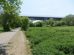 Prince Edward Viaduct (Sean_Marshall) Tags: bridge toronto ontario viaduct valley ravine bloor donvalley bloorstreet princeedwardviaduct donriver