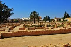 Tunisia El-Djem Colosseum (Lee Armstrong Jones) Tags: africa canon roman tunisia amphitheatre colosseum coliseum tunisie eljem eldjem 550d
