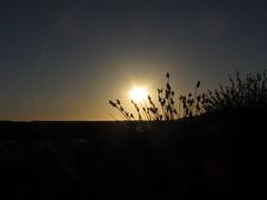 IMG_0828 (iT@c) Tags: sunset sun beach portugal algarve formosa ria