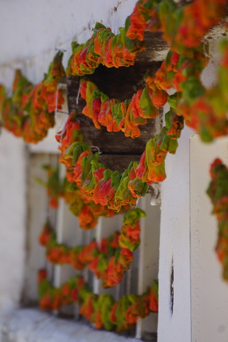 Drying peppers in Tokat