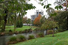 River Running High (Jocey K) Tags: autumn trees newzealand christchurch sky architecture buildings river bench seat cranes nz flagpole avon avonriver victoriasqapartmentdemolition