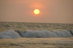 Varkala_sunset_5869 (Manohar_Auroville) Tags: sunset sea sun india beach beauty birds kerala varkala manohar luigifedele