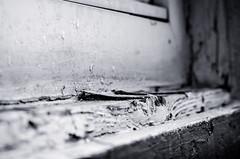 Alter (Thomas TRENZ) Tags: old bw broken window alt fenster sw f80 windowsill fensterbank 75mm 1250s gebrochen tamron287528 iso1000 nikond5100 thomastrenz ausenfensterbank