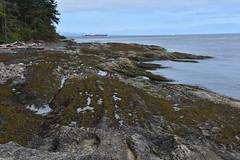 DSC_3130.jpg (JeffD4449) Tags: san juan islands patos island marine state park sanjuanislandspatosislandmarinestatepark eastsound washington unitedstates us