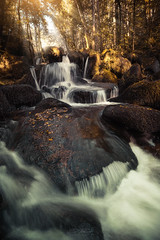 The fall (SC-Pictures ) Tags: auvergne cascade darots france fall water waterfall rocks colors autumn forest wood nature natural longexposure light rays sun