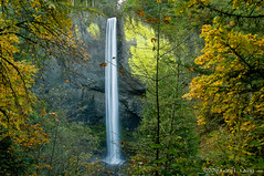 Latourell Falls, October 2016 (Gary L. Quay) Tags: latourell falls oregon columbia gorge fall 2016 autumn leaves waterfall water landscape nikon d300 gary quay foolscape