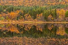 Kaleidoskop (SonjaS.) Tags: herbst autumn lofoten norwegen norway bunt farben colors herbstfarben see spiegelungen reflections