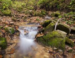 P1150110 (TallGrass-IA) Tags: edgewood iowa unitedstates us panasonic g6 1235 lumix micro43 microfourthirds waterfalls longexposure hiking outdoor nature moss