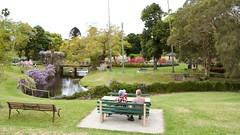 Enjoying the view (Val in Sydney) Tags: wisteria festival parramatta nsw australia australie