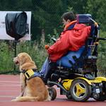 2015 Randos chiens d'aide