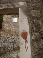 IMG_5365 (maru.hvozdecka) Tags: guca trumpet festival balkan music serbia montenegro krka dubrovnik kotor oldtown unesco gipsy tara bridge fortress church summer waterfalls