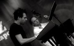 Roz, Rizling s Jazz Napok 2016 _ FP2270M (attila.stefan) Tags: stefan stefn attila pentax roz rizling jazz napok days 2016 summer nyr festival fesztivl music zene portrait portr