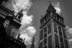 Catedral (Samir Rorless) Tags: sony a6000 pentax smc takumar 28mm f35 andalusia sevilla