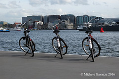 160408_3890 (Michele Gavazza) Tags: amsterdam bycicle landscape onephotoaday