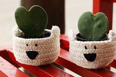 Heart (Morgnia A. Lima ) Tags: croch urso vaso