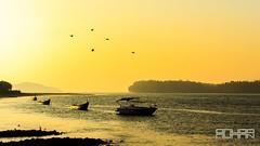 (Rohan2021) Tags: karwar karnataka india river kali delta arabian sea evening sunset canon 50mm 12l landscape